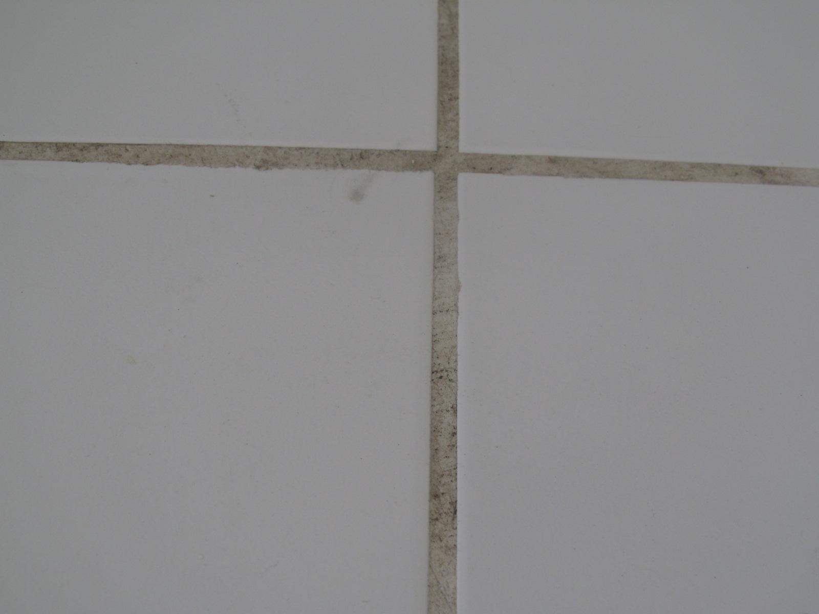 Dicas Para Limpar O Azulejo E Clarear O Rejunte HD Walls Find  #5A5146 1600 1200