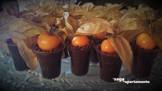 ganache chocolate physalis