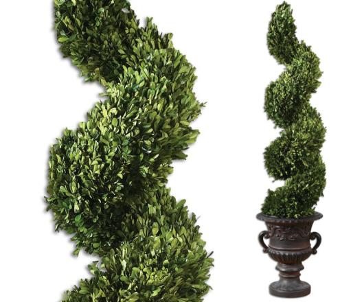 plantas preservadas preserved greens