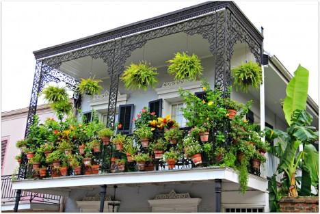 Sacada-em-Nova-Orleans